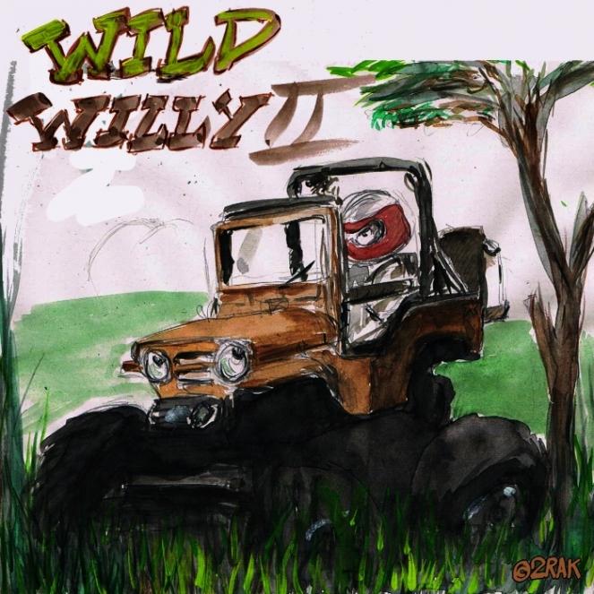 wild willy.jpg