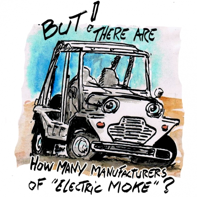 many electric moke color inst.jpg